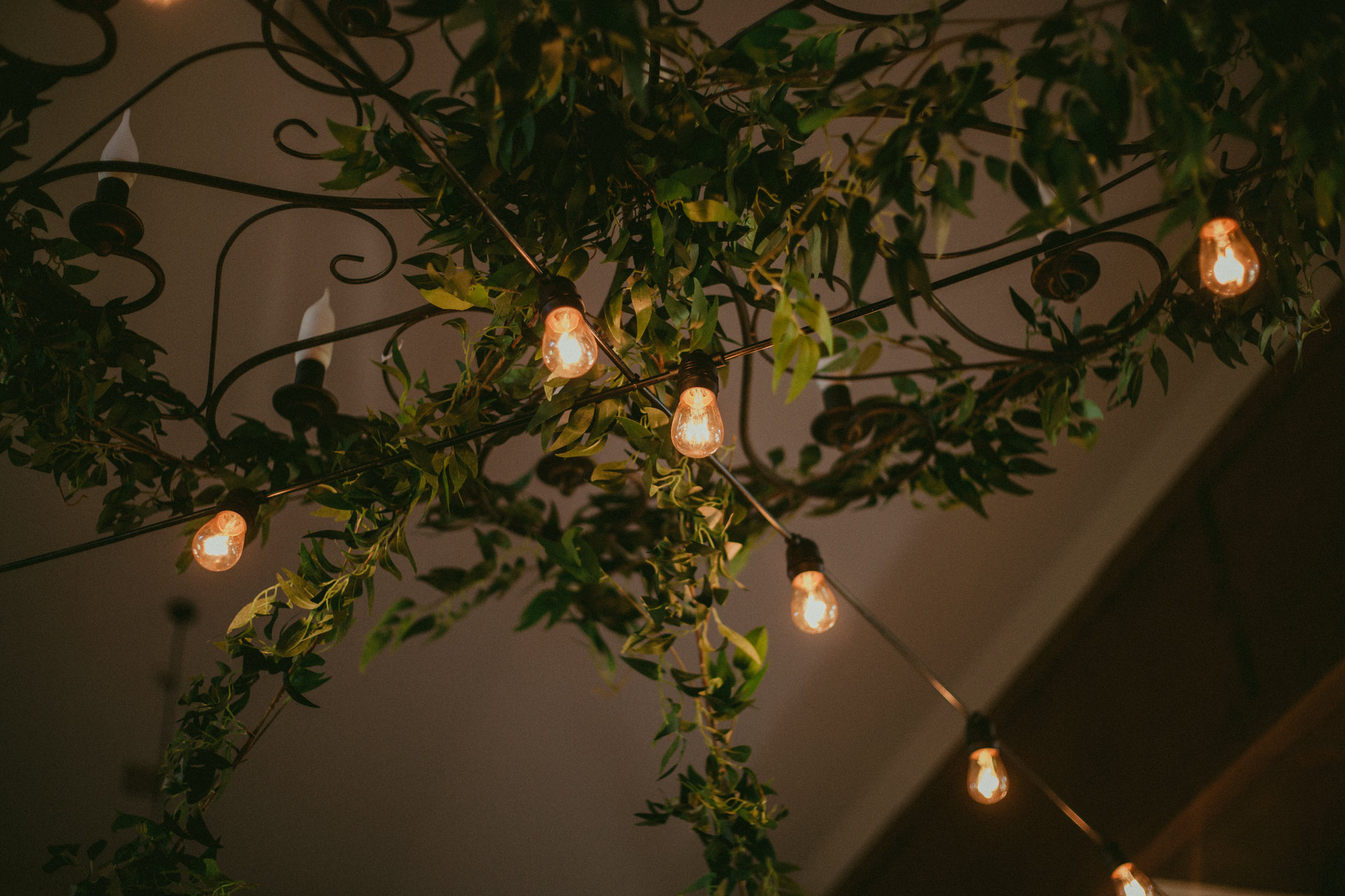 lampki na wesele chutor kozacki