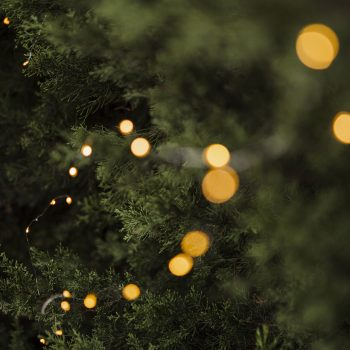 Lampki choinkowe LED